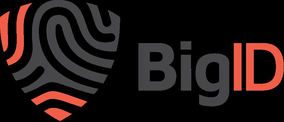 bigID_logo